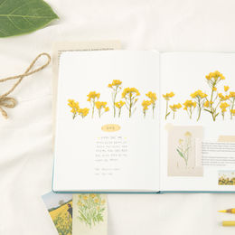 Appree | Pressed Flower Sticker Sheet: Rapeseed Flower
