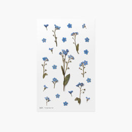 Appree | Pressed Flower Sticker Sheet: Forget Me Not