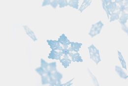 Appree | Sticky Leaf Notes - Snow Flower Gray M