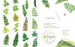 OURS Ferns Masking Tape