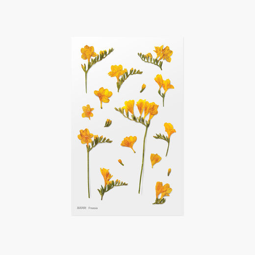 Appree | Pressed Flower Sticker Sheet: Freesia