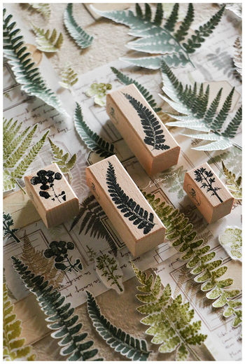 LCN | Fern Specimen stamp set E