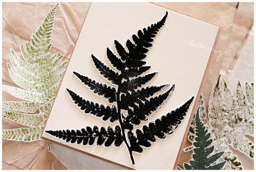 LCN | Fern Specimen stamp set C