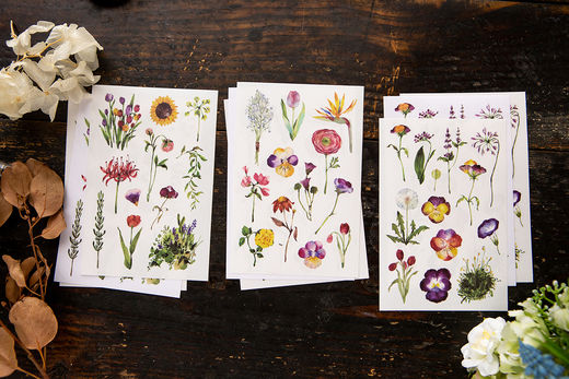 OURS Flowers Sticker Pack