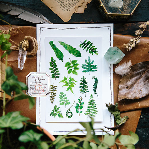 OURS Ferns Print-on Stickers